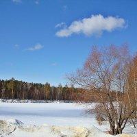 Солнечный март :: Лидия (naum.lidiya)