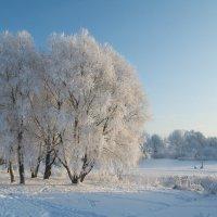 Зима :: Элла Ш.