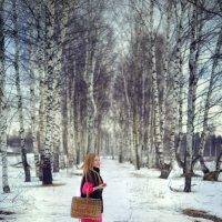 зимний лес :: Ольга Гребенникова