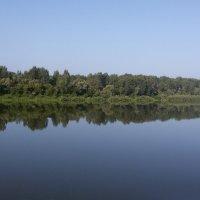 Утро. Берег реки Белой, поросший лесом. :: Сергей Тагиров