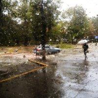 Rainy street :: Сергей Огарёв