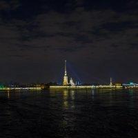Вид на Петропавловку :: Владимир Питерский