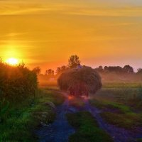 Однажды на закате :: Игорь К.