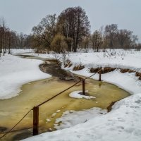 Река Дрезна 2 :: Андрей Дворников