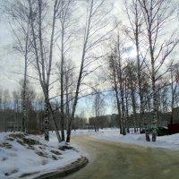 Весеннее раннее утро . :: Мила Бовкун