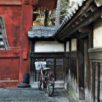 Старинные уголки Токио :: Tatiana Belyatskaya