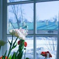 За окошком март... :: Вера Бокарева