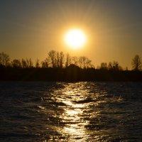 Декабрьское солнце :: Екатерина