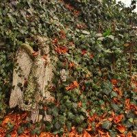 Статуя ангела :: Николай П