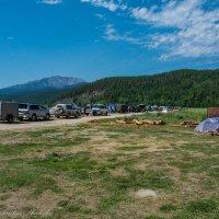 палаточный городок :: Константин Шабалин