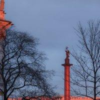Александринская колонна на закате :: Светлана Печорина