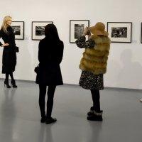В кулуарах фотовыставки :: Николай Ярёменко