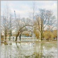 Малоохтинский Парк :: Андрей Зайцев