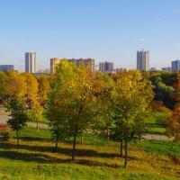 Осенний пейзаж. :: Александр Атаулин