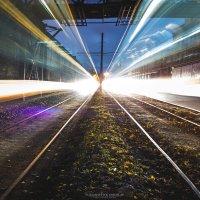 Lightline :: Yaroslav Voitashchyk