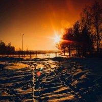 Зимний денек 3 :: Юлия Доронина
