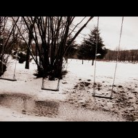 Зима с весною встретилась... :: Olga Grushko