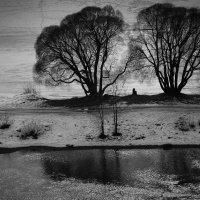 Одиночество :: Евгения Кирильченко