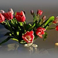 """""""Так грациозны, так божественно милы... Непревзойдённо выглядят тюльпаны..."""" :: Galina Dzubina"""