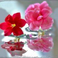 Прикосновение миров... :: Nina Streapan