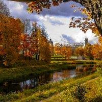 Осень золотая :: Рома Григорьев
