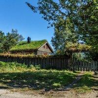 Домик в деревне. Норвегия. :: Наталья Иванова