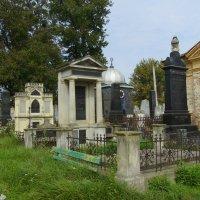 Еврейское  кладбище  в  Черновцах :: Андрей  Васильевич Коляскин
