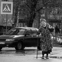 Одинокая весна :: Владимир Голиков