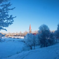Зима. :: Дарья Гречина