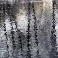 рисунки на воде :: tgtyjdrf