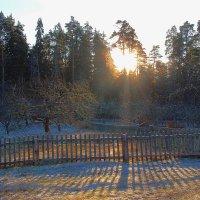 Низкое солнце декабря. :: Нина