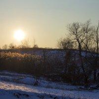 зима в лнр :: Алена Юрченко