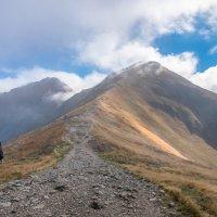 долгая дорога в горы :: Jevgenija St