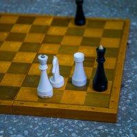 Про шахматы :: Елена Баландина