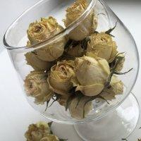 Композиция роз :: Anastasia Furs