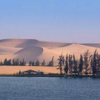 Белые дюны. Муй Не. Вьетнам :: IS_Irin .