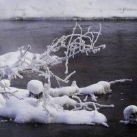 Зимушка-зима, зима снежная была!!! :: Владимир Максимов