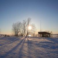 солнечный денек :: Седа Ковтун