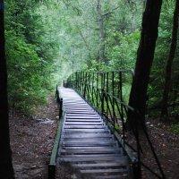 таганайская лестница :: Наталья Зимирева