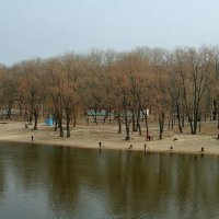 Река в марте.. :: Юрий Анипов