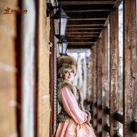 барыня :: Светлана Сироткина