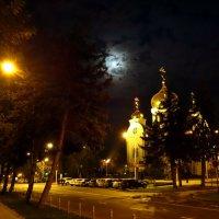 в лунном свете... :: Евгений Р