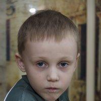 Серьёзный товарищ :: Andrey65
