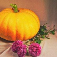 Осенняя подборка :: юрий Амосов
