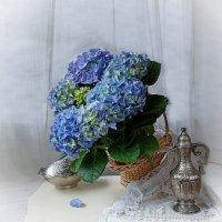 Натюрморт с голубой гортензией :: Ирина Приходько