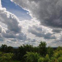 Облачное небо над лесом. :: Сергей Тагиров