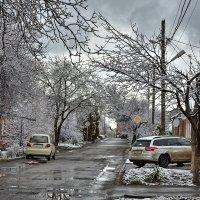 Возвращение зимы :: Дмитрий