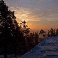 Зимнее утро :: Ольга Фролова