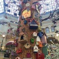 Дерево :: zemfira bashkatova
