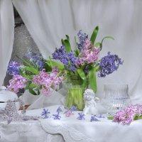 Кружева весны... :: Валентина Колова